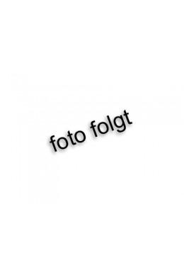 Astralpool Roboter H3 Duo (Vorführgerät)